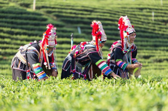 Comunidad akha, Laos