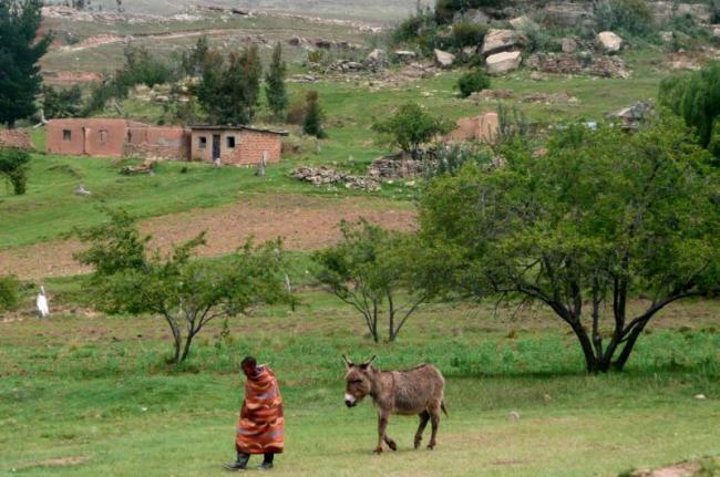 Excursiones en poni, Lesoto