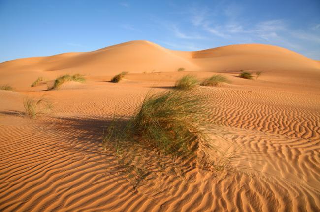 Desierto del Sáhara, Adrar, Mauritania