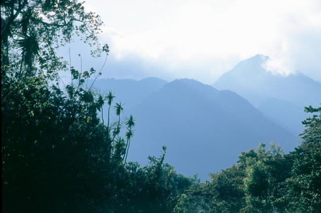 Parque Nacional Volcán Barú, Panamá