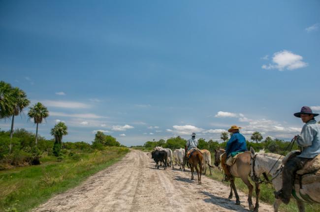 El Chaco, Paraguay