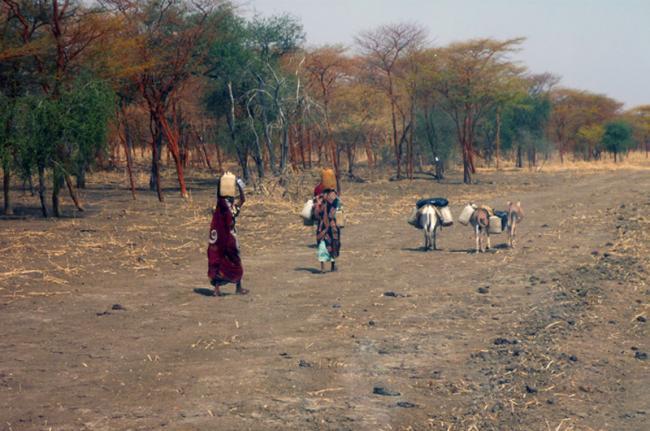 Población tribal, Sudán del Sur