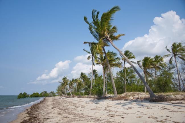 Playa del Parque Nacional Saadani, Tanzania