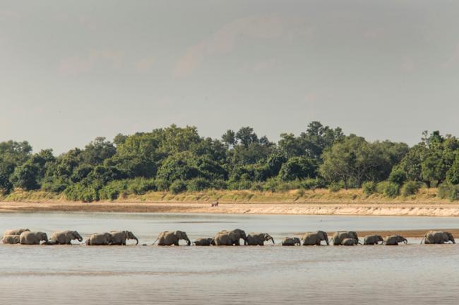 Río Zambeze, Zambia