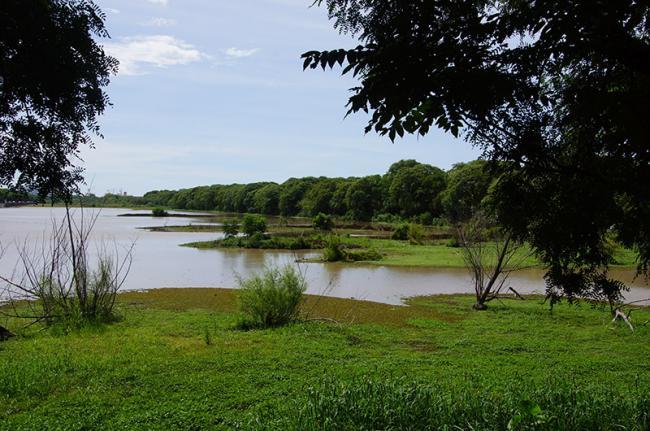 Reserva Ecológica Costanera Sur, Buenos Aires, Argentina