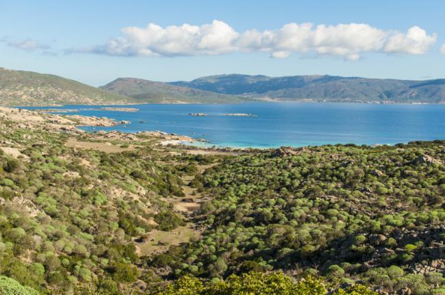 Parco Nazionale dell'Asinara, Cerdeña, Italia
