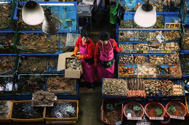 Mercado de pescado de Noryangjin, Seúl, Corea del Sur