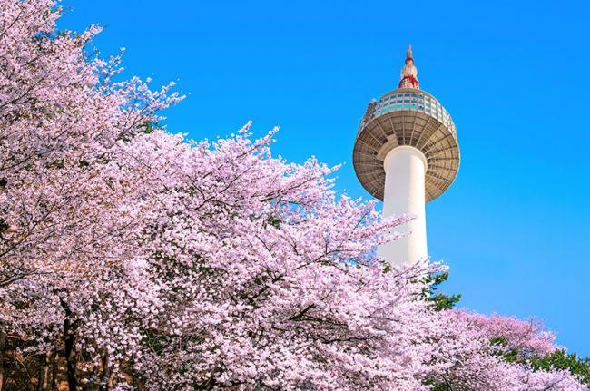 N Seoul Tower, Seúl, Corea del Sur