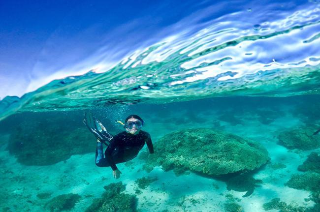 Arrecife de Ningaloo, Australia