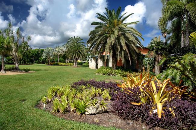 Fairchild Tropical Garden, Miami, Florida, EE UU
