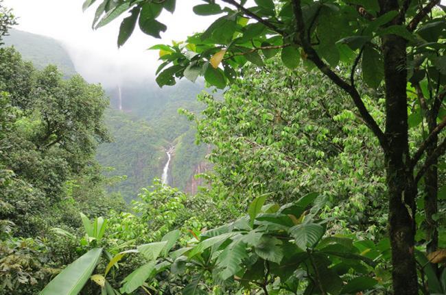 Cataratas del Carbet, Guadalupe