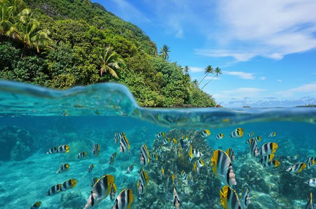 Huahine, Polinesia Francesa