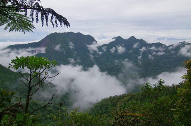 Kolombangara, Islas Salomón