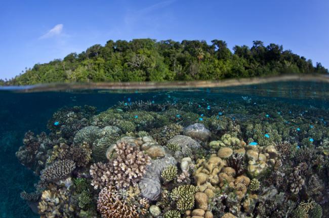 Laguna de Marovo, Islas Salomón