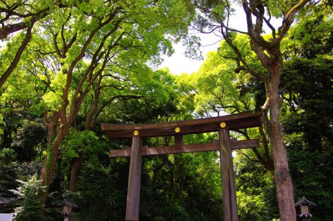 Meiji-jingū, Tokio, Japón