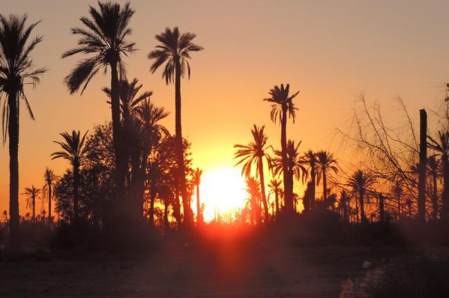 El Palmeral, Marrakech, Marruecos