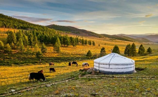 Gorkhi-Terelj, Mongolia.