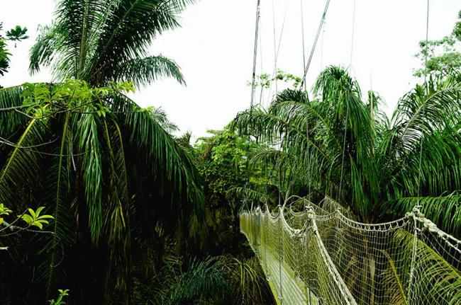 Centro de Conservación de Lekki, Nigeria