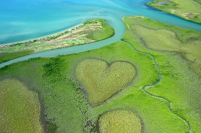 El Corazón de Voh, Nueva Caledonia