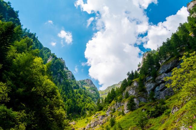 Montes Cárpatos, Rumanía