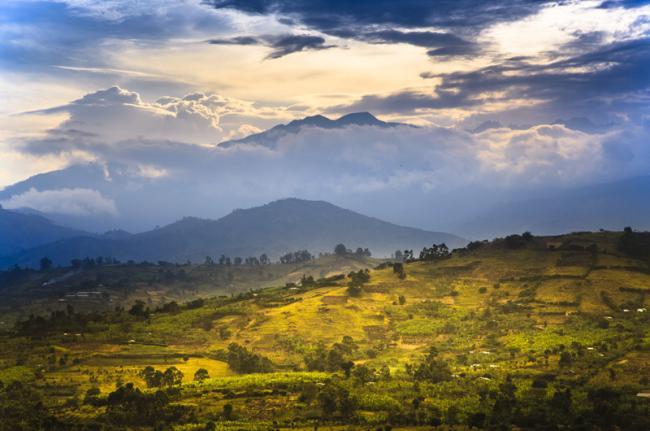 Montes Rwenzori, Uganda