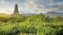 Pico Cão, Santo Tomé y Príncipe