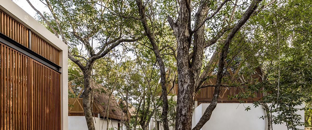 Jungle Teva, alojamiento ecológico de Tulum, México. Viaje sostenible Lonely Planet